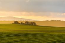 Hazy Rural Evening Landscape W...