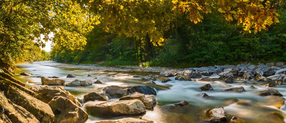 Fototapeta Herbstpanorama am Fluss mit goldenen Sonnenstrahlen