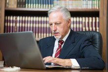 Businessman Using His Laptop I...