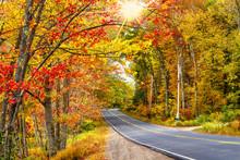Beautiful Autumn Road Winding Through Splendid Fall Foliage In New England. Sun Rays Peeking Through Golden Trees.