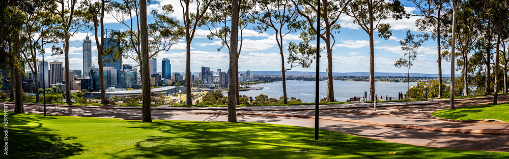 Fototapety, obrazy: Panorama of lemon scented gum trees and Perth Central Business District from Kings Park, Perth, Australia on 25 October 2019