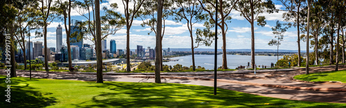 Fotografia, Obraz Panorama of lemon scented gum trees and Perth Central Business District from Kin