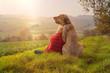 Beste Freunde - ein Kind lehnt sich an seinen Hund, einen Broholmer, an und beide genießen in der Natur den Sonnenuntergang an einem Herbsttag