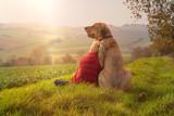 Fototapeta Dogs - Beste Freunde - ein Kind lehnt sich an seinen Hund, einen Broholmer, an und beide genießen in der Natur den Sonnenuntergang an einem Herbsttag