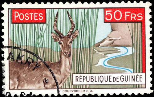 Valokuvatapetti Postage stamp issued in Guinea with the image of the Impala antelope Defassa Wat