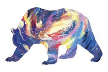 Bright Bear Silhouette Galaxy Sky. Slumber Illustration On White Background