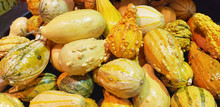 Abstract Several Gourds Backgr...