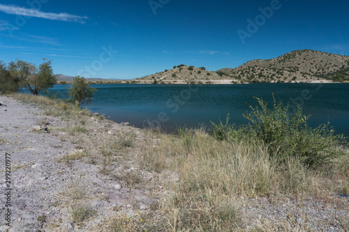 Shoreline brush at Bill Evans Lake in New Mexico. фототапет