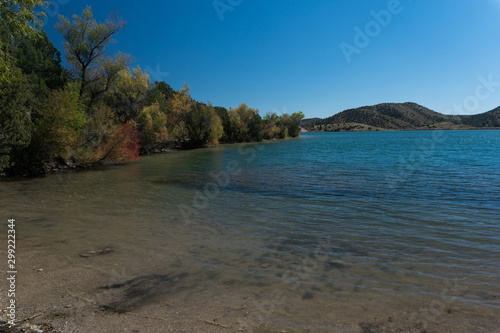 Trees along Bill Evans Lake in New Mexico. Canvas Print