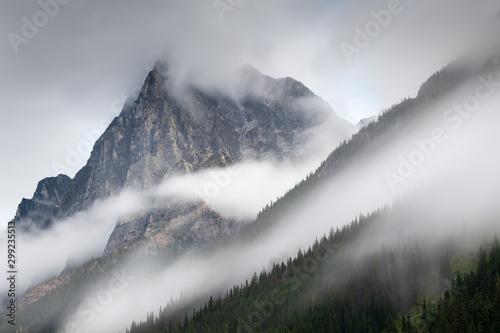Valokuva  Mount MacDonald in the mist