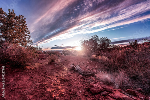Foto op Canvas Bordeaux Arches National Park close to sunset in Moab, Utah, USA.