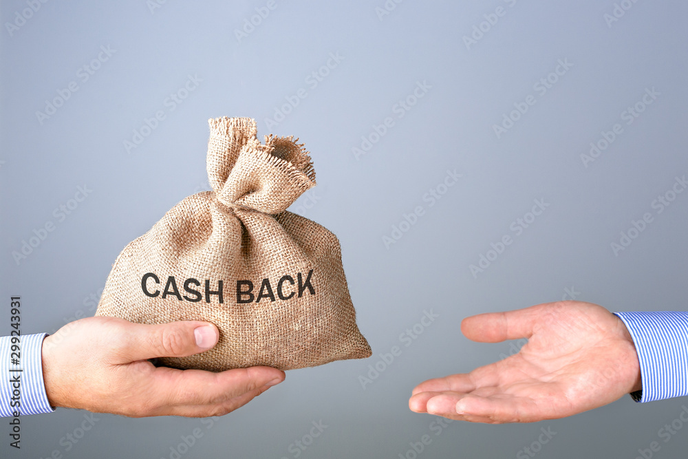 Fototapety, obrazy: Mans hand holding, giving bag with cash bag. Cash back or money refund concept.