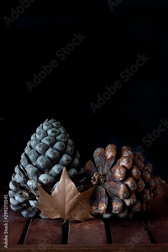 Poster Roe REE PINEAPPLES NEXT TO SHEET ON DARK BACKGROUND. AUTUMN COLORS
