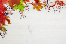 Autumn Flat Lay Copy Space: To...