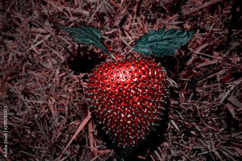Strawberry Artificial Plastic Decoration Canvas Print