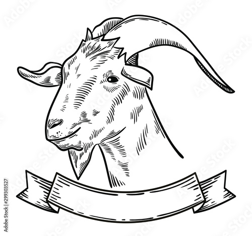 Photo vector illustration of farm animal goat head, ideal for label, logo, sketch styl