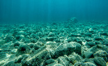 Rock Underwater On The Seabed ...