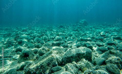 Carta da parati Rock underwater on the seabed in the Mediterranean sea, natural scene