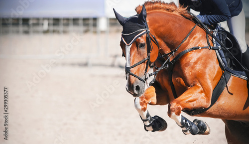 Photo A sorrel beautiful horse with a rider in the saddle jumps high at a show jumping competition on a Sunny day