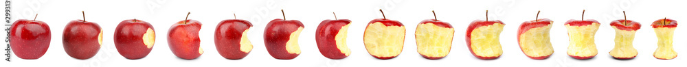 Fototapeta Set of fresh ripe apples on white background
