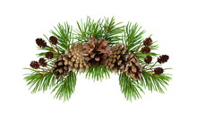 Christmas Arrangement With Pine Twigs And Cones