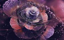 3d Illustration, Airy Shiny Rose On A Dark Background