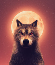 Wolf And The Moon,3d Illustrat...