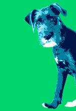 Blue Dog Illustration (wolfhound)