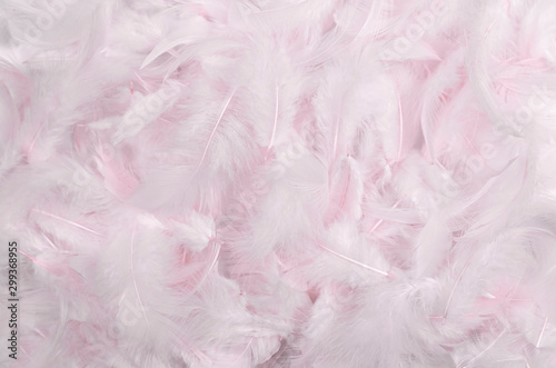 pink feathers background Wallpaper Mural