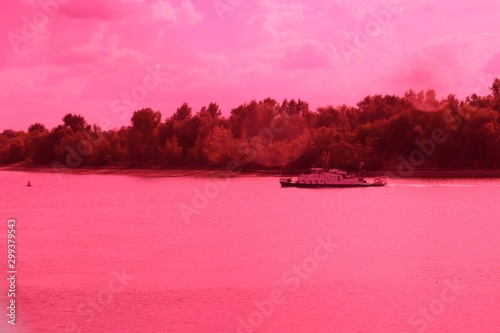 Foto op Canvas Candy roze morning in the park