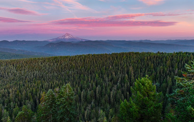 Panel Szklany Las Mount Hood and Forest Sunset