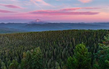 Fototapeta Las Mount Hood and Forest Sunset