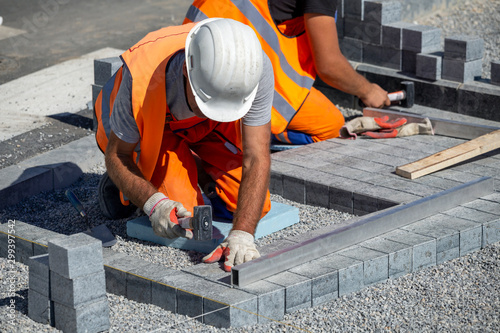 Fototapeta Construction workers laying paving bricks outdoor