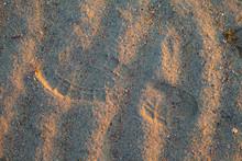 Trekking Boots Footprints On Wet Sand. Sunset Walk Outdoors