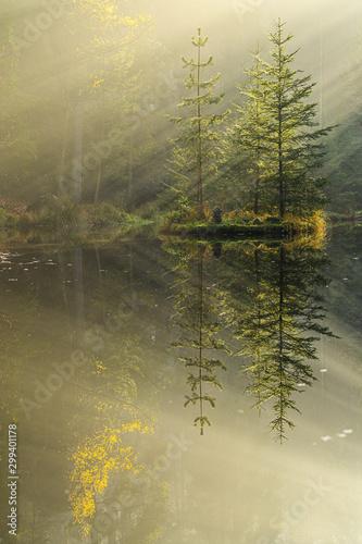 jezioro-w-mglistym-lesie-jesienia