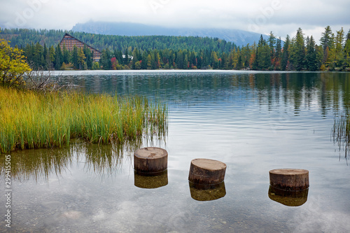 Poster Trees The autumn Strbske pleso with foggy mountains of hight Tatras National Park in Slovakia.