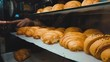 Close-up slide view on a croissant display case indoor. Female hand choosing croissant