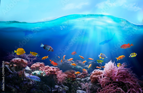 Rich colors of the coral reef. Underwater sea world. Colorful tropical fish. Ecosystem.
