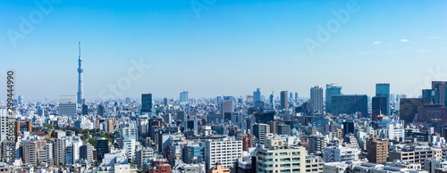 Photo (東京都-風景パノラマ)展望台から望む墨田方面の風景1