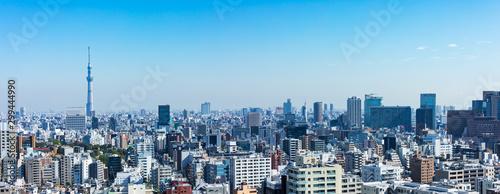 (東京都-風景パノラマ)展望台から望む墨田方面の風景1 Wallpaper Mural