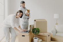 Happy Home Buyers Pose Near Unpacked Boxes, Enjoy Relocation In New House, Woman Searches Ideas For Redecoration Bedroom, Man Carries Pedigree Dog, Decide To Do Repairing Of Flat. Mortgage Concept