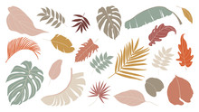 Set Of Abstract Tropical Leave...
