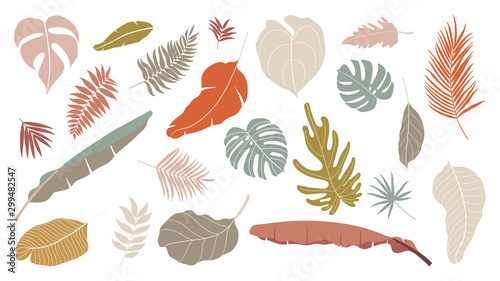 Fototapeten Künstlich Set of abstract tropical leaves. Abstract botanical element collection with Earth tone color. Design for natural and floral background pattern, cards and packaging, cosmetics, spa, beauty care.