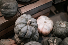 Green And White Pumpkins On Di...