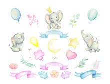 Little Elephants, Tropical Pla...