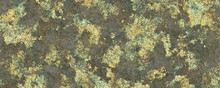 Mossy Wall Texture Background