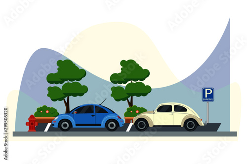 beetle new and old flat design Canvas Print