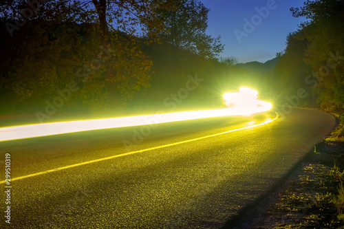 Papiers peints Route dans la forêt Headlight Trails on the Night Road