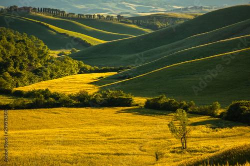 Montage in der Fensternische Honig Spring in Tuscany rolling fields in Pienza Firenze Siena Italy