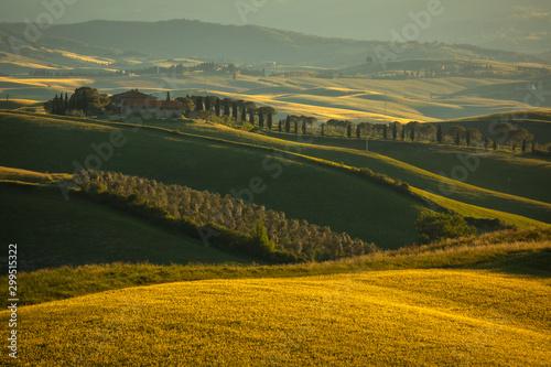 Montage in der Fensternische Olivgrun Spring in Tuscany rolling fields in Pienza Firenze Siena Italy